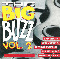 Various Artists / Sampler Big Buzz Vol. 2