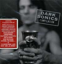 Various Artists / Sampler Dark Sonics CD 111791