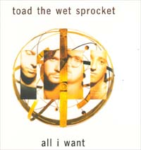 Toad The Wet Sprocket All I Want MCD 563645