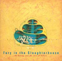 Fury In The Slaughterhouse Hearing & The Sense Of - Digi CD 566602